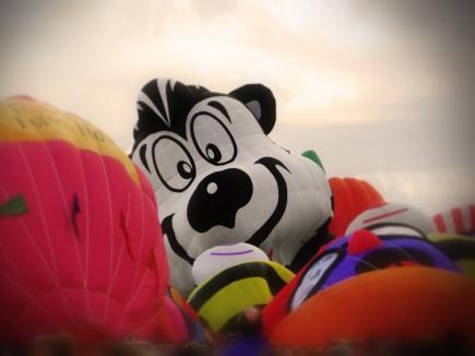Albuquerque Balloon Fiesta Special Shapes Stinky