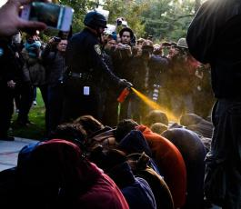 Occupy protest pepper spray at UC Davis CA November 17 2011