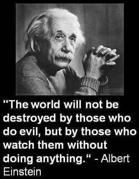 OWS Albert Einstein quote The world will not be destroyed by those who do evil
