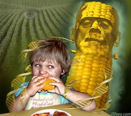 Satire on genetically modified corn