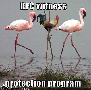 funny picture with captions kfc witness protection program