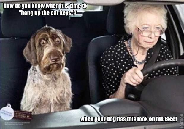 car chat room for seniors