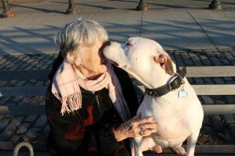 BadRap McDonald's protest photo of pit bull kissing an elderly woman