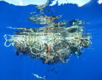 Patch of floating ocean garbage. Photo Credit: Lindsey Hoshaw