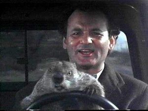 groundhog_day Bill Murray