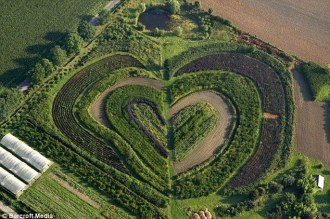 heart shaped garden