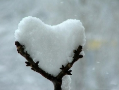 heart shaped snow