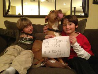 Letter sent to BADRAP in protest to McDonald's commercial mentioning stray pit bulls 01