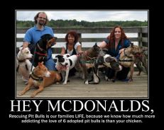 Letter sent to BADRAP in protest to McDonald's commercial mentioning stray pit bulls 03