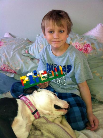 Letter sent to BADRAP in protest to McDonald's commercial mentioning stray pit bulls 04