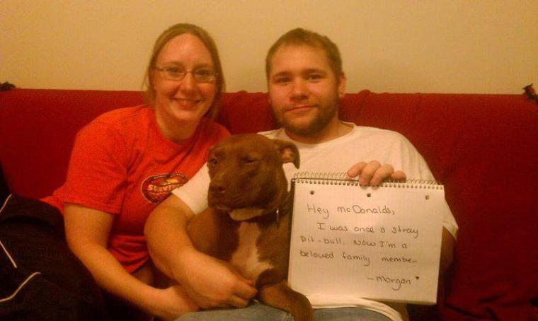 Letter sent to BADRAP in protest to McDonald's commercial mentioning stray pit bulls 09