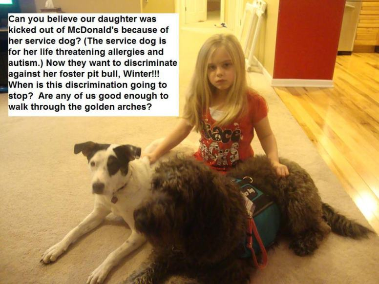Letter sent to BADRAP in protest to McDonald's commercial mentioning stray pit bulls 10