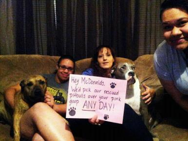 Letter sent to BADRAP in protest to McDonald's commercial mentioning stray pit bulls 12