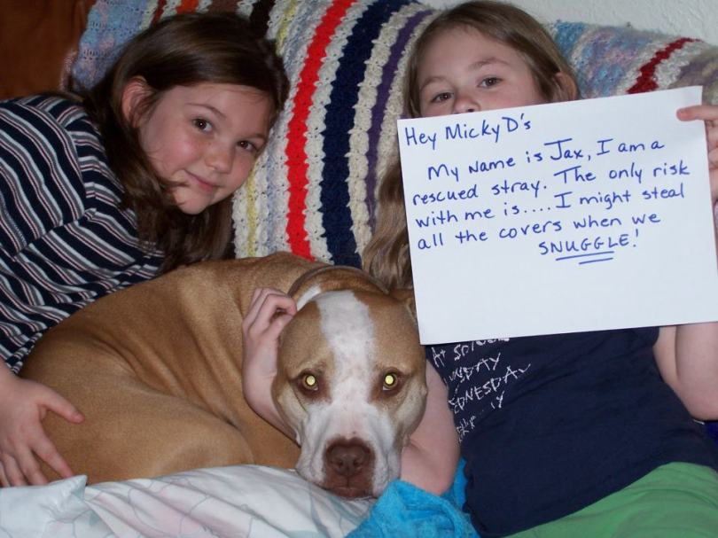 Letter sent to BADRAP in protest to McDonald's commercial mentioning stray pit bulls 20