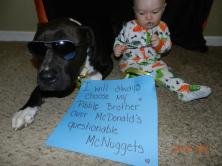 Letter sent to BADRAP in protest to McDonald's commercial mentioning stray pit bulls 25