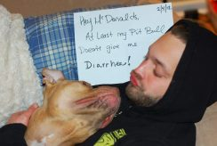 Letter sent to BADRAP in protest to McDonald's commercial mentioning stray pit bulls 28