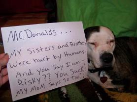 Letter sent to BADRAP in protest to McDonald's commercial mentioning stray pit bulls 30