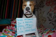 Letter sent to BADRAP in protest to McDonald's commercial mentioning stray pit bulls 32
