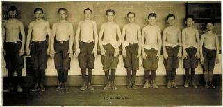 Baltimore anthropometric study, boys 15-16 years, body build