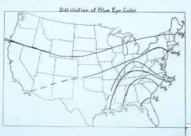 Distribution of blue eye color in the United States