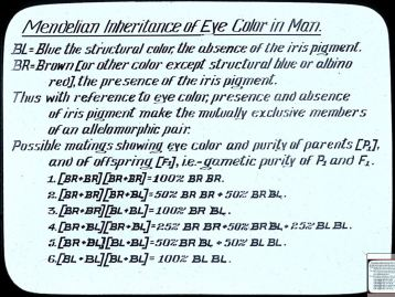 Mendelian inheritance of eye color in man