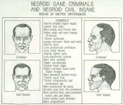 Negroid sane criminals and Negroid civil insane, mosaic of metric differences