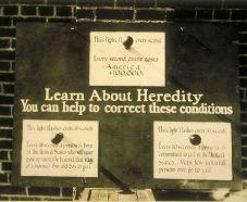 Poster Learn about heredity you can help correct these conditions