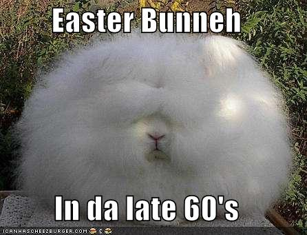 Funny happy easter bunny