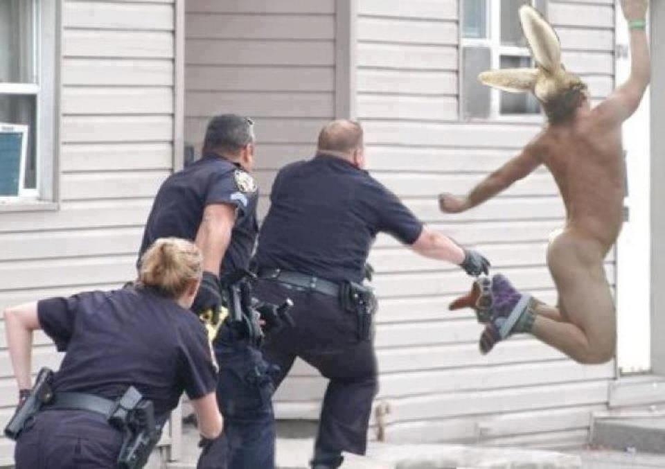 funny photo easter humor naked man with rabbit ears being chased by ...