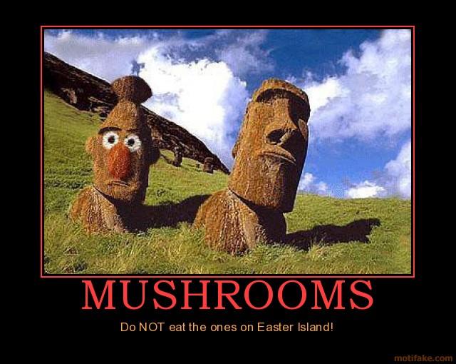 Funny Meme For Easter : Who killed the easter bunny Ærchies archive digital detritus