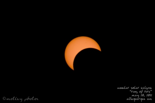 Annular Solar Eclipse_Ring of Fire_05 20 2012_ABQ NM_Eclipse 02