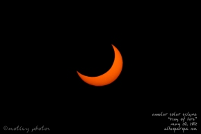 Annular Solar Eclipse_Ring of Fire_05 20 2012_ABQ NM_Eclipse 07
