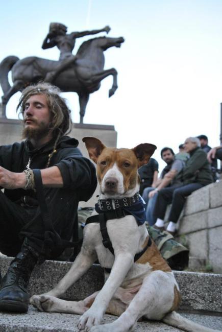 NATO Protest Chicago Protestors 37