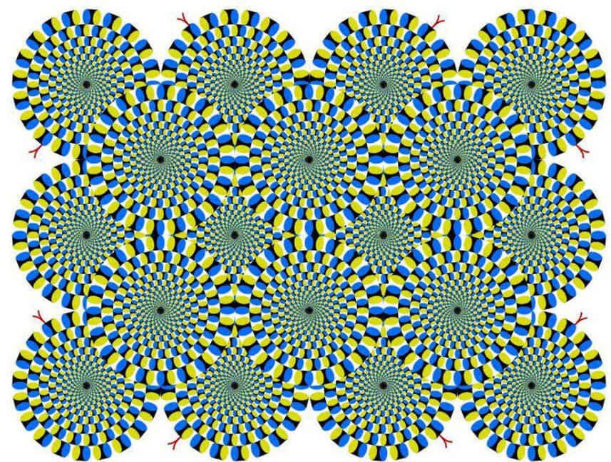 A Plethora of Optical Illusions (6/6)