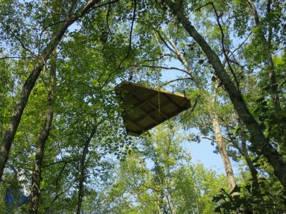 Stop the Keystone XL Pipeline_tree top activists sky pod