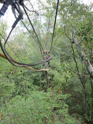 Stop the Keystone XL Pipeline_tree top activists traverse lines