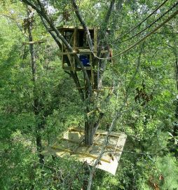 Stop the Keystone XL Pipeline_tree top activists tree house looking down on it