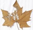 Spanish artist Lorenzo Duran leaf carving 3