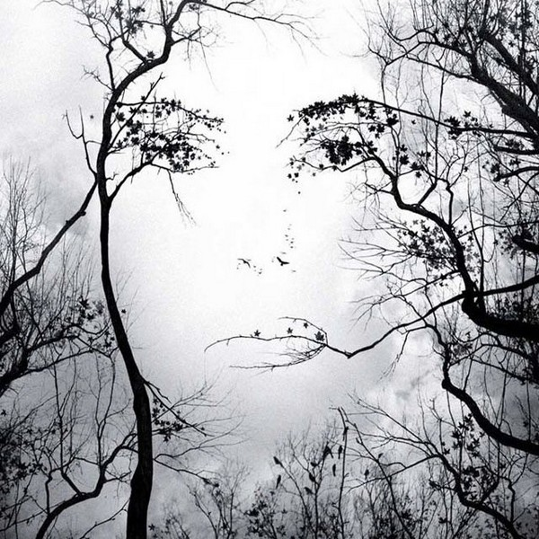 double-image-illusion-womans-face-in-tree-limbs