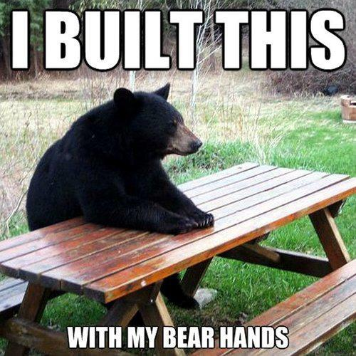 Humorous photo funny caption bear at picnic table built with bear hands