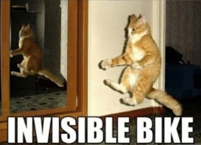 Invisible_cat_bike