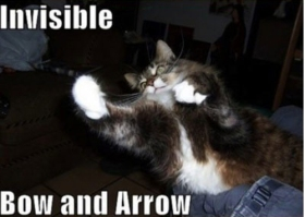 Invisible_cat_bow_and_arrow