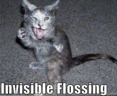 Invisible_cat_flossing_teeth