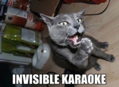 Invisible_cat_karaoke