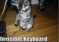 Invisible_cat_keyboard