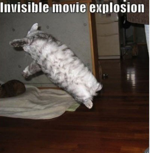 Invisible_cat_movie_explosion