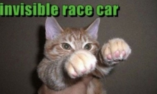 Invisible_cat_race_car