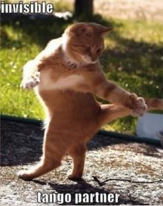 Invisible_cat_tango_partner