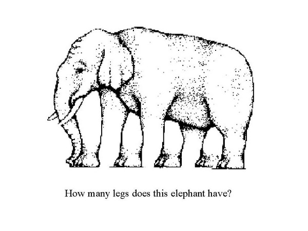 look-twice-illusion-how-many-legs-elephant