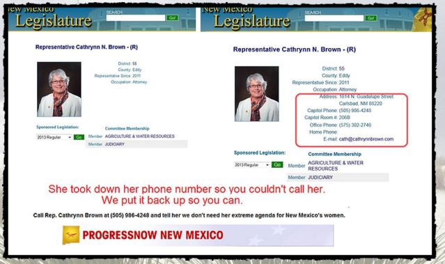 NM Rep Cathrynn Browns contact information